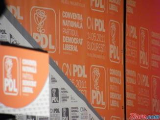 Alegeri PD-L - vezi noua echipa de conducere