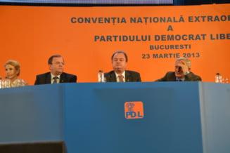Alegeri in PDL - Sustinatorii lui Blaga se bat intre ei