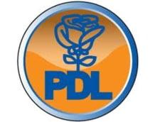 Alegeri parlamentare 2012: Ce avere are Gigi Chiru, candidat PDL la Senat