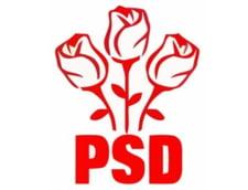 Alegeri prezidentiale 2014: PSD acuza PDL ca ofera bauturi oamenilor pentru a-l vota pe Iohannis