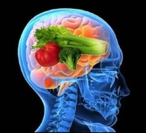 Alimente pentru un creier tanar si alert