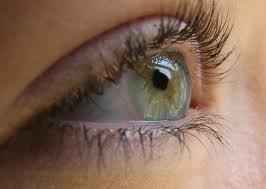 Alimente recomandate pentru ochi sanatosi
