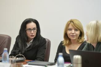 Alina Ghica, judecatorul care a blocat Inalta Curte la cererea lui Dragnea, a fost desemnata in dosar in urma cu doar doua zile UPDATE