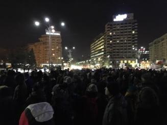 Alina Mungiu Pippidi: As vrea sa stiu cine a chemat oamenii in strada. Sunt ONG-uri care iau bani de la un Doi si-un sfert
