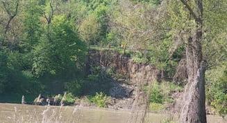 Alunecare de teren pe malul raului Mures, sub DN 7