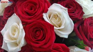 Am importat trandafiri in valoare de peste 16 milioane de euro, in 2017