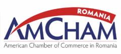 "AmCham: Companiile renunta la planurile de investitii. Romanii care aleg sa ramana inca in tara deconteaza plata pentru ordonanta ""lacomiei"""