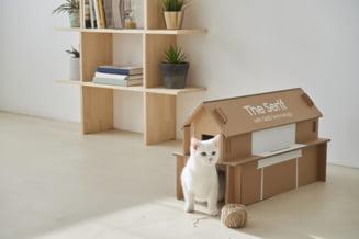 Ambalajele de la televizoarele Samsung se transforma in casute de pisici sau piese de mobilier