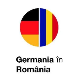 Ambasadorul Germaniei la Bucuresti: Declaratiile defaimatoare la adresa minoritatii germane sunt inacceptabile. Ar fi util ca Guvernul sa se distanteze