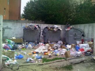 Amenzi in valoare de 440.000 de lei, in urma controalelor Garzii Nationale de Mediu privind starea salubrizarii din Capitala
