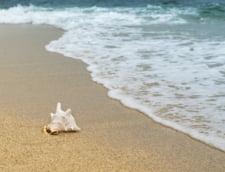 Ampla operatiune de igienizare pe litoralul romanesc: 300 de tone de deseuri au fost adunate inaintea sezonului estival