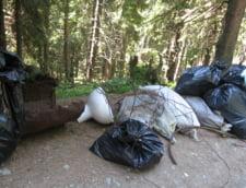 Amplu program de ecologizare: Let's do it, Romania!