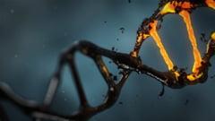 Analizele ADN vor fi reluate pentru oasele gasite in padure. IML: Rapoartele de pana acum sunt preliminare