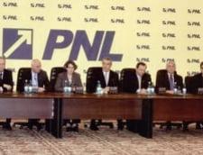 Andrei Petrescu, candidatul PNL pentru primaria sectorului 4