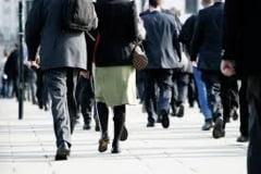 Angajatii pe drepturi de autor ar putea sa fie scutiti de contributii cat timp au contract de munca