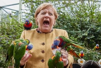 Angela Merkel, imaginea zilei, după ce a fost ciupită de papagali în timpul unei vizite la un parc de păsări din Anglia