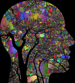 Antreneaza-ti mintea in perioada izolarii: Exercitii de memorie, concentrare si confort propuse de neurologi