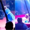 Antrenoare insarcinata, atacata de un urs in fata a zeci de copii terifiati, in timpul unui spectacol de circ din Rusia