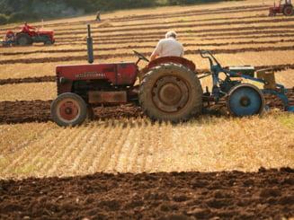 Anul agricol 2012 va fi dezastruos: seceta, furaje lipsa, fermieri fara echipamente