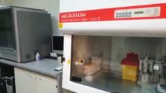 Aparatatele DSV pentru gripa porcina ar putea merge si pentru depistarea COVID-19