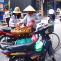 Apel catre vietnamezi: Nu mai mancati caini si pisici