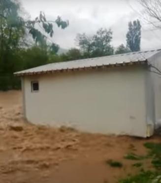 Apele Crisului au facut prapad in Bihor. O casa este luata de puhoaie sub privirile localnicilor VIDEO