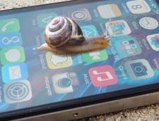 Apple va plati scump pentru ca te-a fortat sa-ti cumperi un nou iPhone