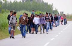 Aproape 30 de irakieni, prinsi de politisti in Caras-Severin!