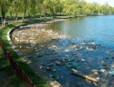 Aproape 5 tone de deseuri, scoase din lacul Plumbuita