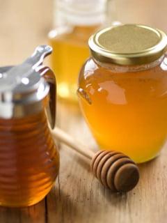 Aproape totul despre albine si mierea de albine (I)