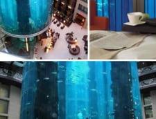 AquaDom acvariu cilindric enorm Radisson Berlin