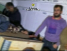 Arad: Migranti din Siria si Palestina, prinsi cand incercau sa iasa ilegal din Romania. Erau ascunsi in masina unui bulgar