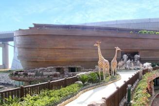 Arca lui Noe in marime naturala la Hong Kong