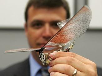 Armele viitorului, in armata americana: Robotii-insecte (Galerie foto)