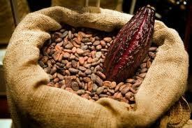 Asiaticii ne lasa fara ciocolata? Pretul boabelor de cacao explodeaza