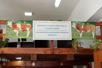 Asociatia Judeteana a Crescatorilor de Bovine Covasna are sediu nou