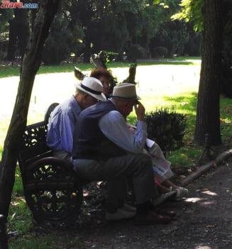 Asociatiile de pensionari ar putea dobandi gratuit bunuri de la administratia locala - proiect PSD si ProRomania