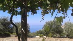 Atentie, turisti! La mare in Croatia sunt incendii de vegetatie