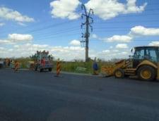 "Autostrada ""blestemata"" Sibiu-Orastie va fi salvata cu 35.000 de salcami"
