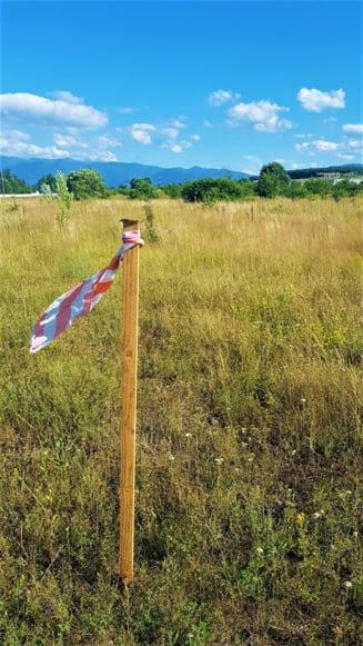 Autostrada Sibiu-Pitesti ar putea salva zeci de vieti anual. Doar ca abia prinde contur... pe hartie, desi trebuia inaugurata anul viitor