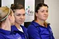 Avancronica meciului Simona Halep - Alexandra Dulgheru, din sferturile de finala de la Roma