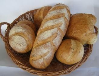 Avem recolta mai buna ca in 2012, dar tot nu scade pretul la paine