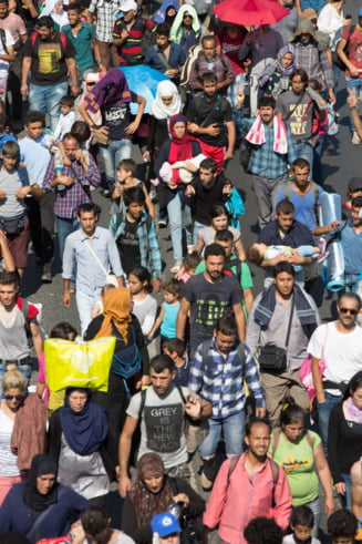 Avertisment din Europa: Sa primim toti refugiatii ar fi o victorie a Statului Islamic