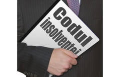 Avocatul Poporului a contestat Codul Insolventei la CCR - ce articole sunt neconstitutionale