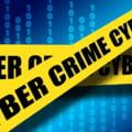 Azi s-ar putea decide soarta hackerilor romani care au atacat Politia din Washington inainte de investitura lui Trump