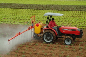 BCR: Agricultura noastra are potential de a hrani 4 Romanii