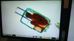 Baiat de 8 ani, introdus ilegal in Spania intr-o valiza