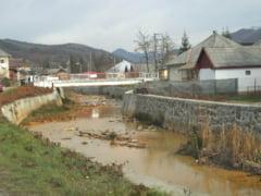 Baita Baii, poluare de ape si defrisari masive