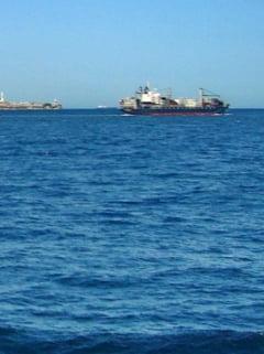 Balenele au trait si in Marea Mediterana - romanii au dezvoltat o afacere infloritoare din vanarea lor