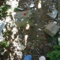 Banicioiu: Am gasit un numar alarmant de seringi in parcul Garii de Nord